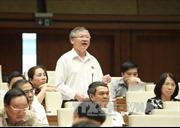 Ông Hồ Văn Năm thay bà Phan Thị Mỹ Thanh làm Trưởng đoàn đại biểu Quốc hội  Đồng Nai