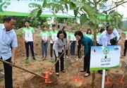 Vinamilk trồng 10.000 cây xanh tại Bắc Kạn