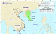 Vùng áp thấp trên biển Đông đang mạnh lên thành áp thấp nhiệt đới