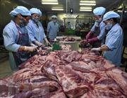 Thịt lợn mát sẽ thay thế dần thịt lợn tươi sống