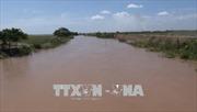 Mực nước dâng nhanh, vùng trũng Đồng bằng sông Cửu Long đối mặt nguy cơ ngập lụt