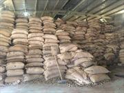 Trốn thuế gần 22 tỷ đồng, Công ty Nông sản Thái Bình bị khởi tố