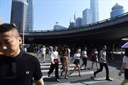 Cuộc sống không ngủ, không sex ở 'Thung lũng Silicon Trung Quốc'