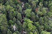 Tìm thấy mảnh vỡ của máy bay cứu hộ bị mất tích ở Nhật Bản