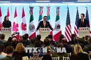 Tái đàm phán NAFTA: Mỹ và Canada chưa thấy 'ánh sáng cuối đường hầm'