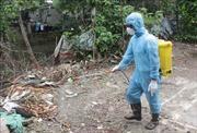 Dịch bệnh sốt xuất huyết diễn biến phức tạp tại Hà Nam