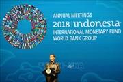 Hội nghị IMF-WB: Khai mạc phiên họp toàn thể