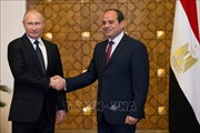 Tổng thống Nga và Ai Cập hội đàm chính thức
