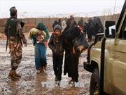 Syria cho phép LHQ chuyển hàng viện trợ đến khu vực biên giới với Jordan