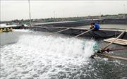 10 năm chiến lược biển Việt Nam: Tạo đột phá trong phát triển kinh tế vùng biển