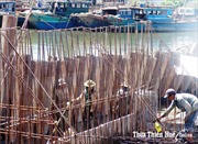 Thừa Thiên - Huế chi khẩn hơn 300 tỷ đồng xây kè chống sạt lở bờ biển