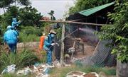 Xuất hiện ổ dịch cúm gia cầm H5N6 nguy hiểm dễ lây lan sang người