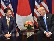 Thủ tướng Nhật Bản Shinzo Abe hội đàm với Tổng thống Mỹ Donald Trump