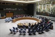 Vấn đề hạt nhân Iran 'nóng' cuộc họp của Hội đồng Bảo an Liên hợp quốc