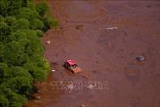 Vụ vỡ đập tại Brazil: Tập đoàn Vale SA bị tước giấy phép vận hành đập Lanjeiras