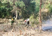 Nguy cơ cháy rừng cấp cực kỳ nguy hiểm tại Lào Cai
