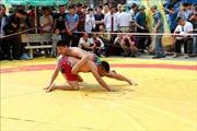 75 VĐV tham gia Giải vô địch vật dân tộc mở rộng tỉnh Hải Dương năm 2019