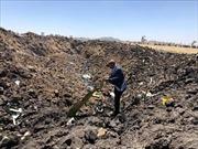 Công bố kết quả điều tra sơ bộ vụ tai nạn máy bay của Ethiopian Airlines