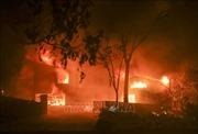 Bang California huy động vệ binh quốc gia sẵn sàng ứng phó với cháy rừng