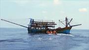 Cấp cứu, đưa người bị nạn trên biển về đất liền chữa trị