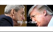 Tổng thống Donald Trump chỉ trích cuộc điều tra Nga can thiệp bầu cử Mỹ
