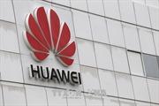 Giới chức Anh muốn điều tra đến cùng vụ rò rỉ tin tuyệt mật về Huawei