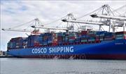 Chuyên gia đánh giá thiệt hại nếu căng thẳng thương mại Mỹ - Trung kéo dài