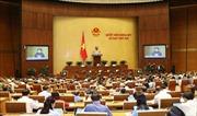 Quốc hội cho ý kiến về dự án Luật Phòng, chống tác hại của rượu, bia