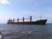 Triều Tiên thúc đẩy chiến dịch ngoại giao, yêu cầu Mỹ thả tàu hàng