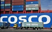 Doanh nghiệp Mỹ, Trung Quốc lao đao đối phó với thuế quan