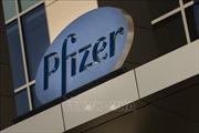 Pfizer thâu tóm Array BioPharma với giá hơn 11 tỷ USD