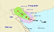 Bão số 2 cách tỉnh Quảng Ninh - Nam Định khoảng 240 km