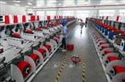 Chuyên gia: Ký kết EVFTA sẽ khiến xu hướng dịch chuyển sản xuất sang Việt Nam