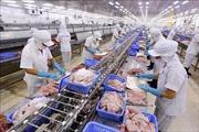Hiệp định CPTPP: Tăng cơ hội xuất khẩu sang thị trường Nhật Bản