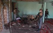 Afghanistan tiêu diệt hàng chục phiến quân Taliban