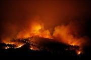 Trên 1.000 lính cứu hỏa vật lộn với 'giặc lửa' tại Bồ Đào Nha