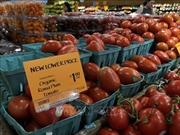 Mỹ và Mexico đạt thỏa thuận chấm dứt tranh cãi về áp thuế cà chua
