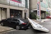 Triều Tiên nâng cao cảnh giác trước bão Lingling- Nhật Bản sẵn sàng ứng phó với bão Faxai