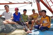 Kịp thời cứu nạn 6 ngư dân bị chìm tàu trên biển