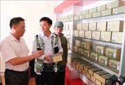 Bài thuốc quý chữa bệnh gan của chàng thanh niên người Mông
