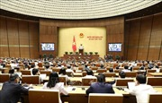 Ngày 21/11, Quốc hội thảo luận hai dự án Luật