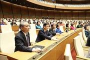 Khẩn trương triển khai thực hiện các luật, nghị quyết đã được Quốc hội thông qua