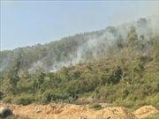 Đã dập tắt đám cháy rừng ở Kinh Môn, Hải Dương