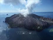 Núi lửa phun trào ở New Zealand: 6 người thiệt mạng, 8 người mất tích
