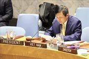 Hội đồng Bảo an LHQ thảo luận về tình hình Mali dưới sự chủ trì của Việt Nam