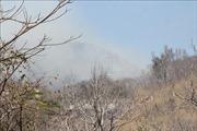 Bà Rịa-Vũng Tàu: Cháy rừng lan nhanh trên núi Minh Đạm