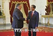 Mỹ khẳng định Indonesia là đối tác chiến lược