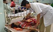 Tăng cường theo dõi, điều trị, hạn chế các trường hợp tử vong do sốt xuất huyết