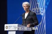 IMF hối thúc phát triển giải pháp đa phương cho thương mại toàn cầu