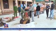 Nghệ An bắt băng nhóm trộm chó chuyên nghiệp